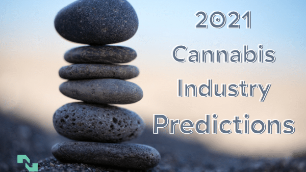 2021 cannabis industry predictions are precarious things